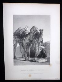 After David Wilkie C1870 Antique Print. Group of Camels at Smyrna. Turkey